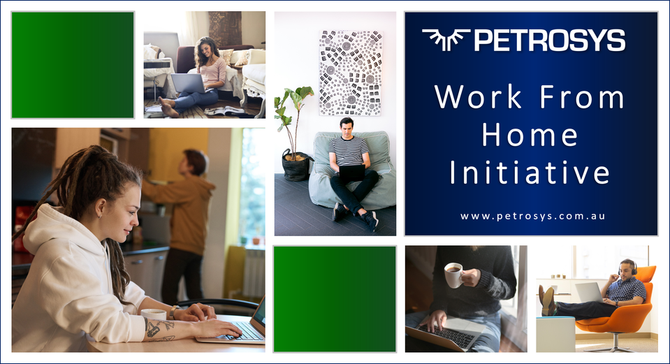 Petrosys Working From Home Initiative